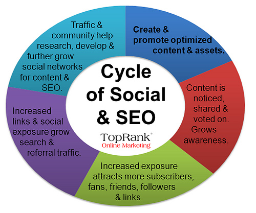 top rank seo cycle